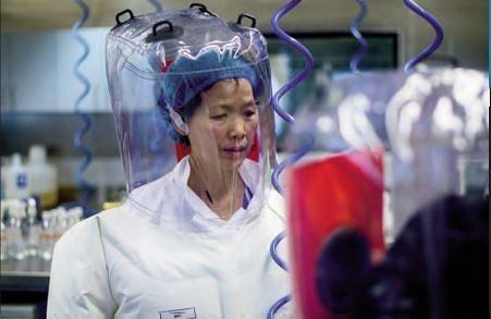 Coronavirus update: Wuhan virology lab denies virus link