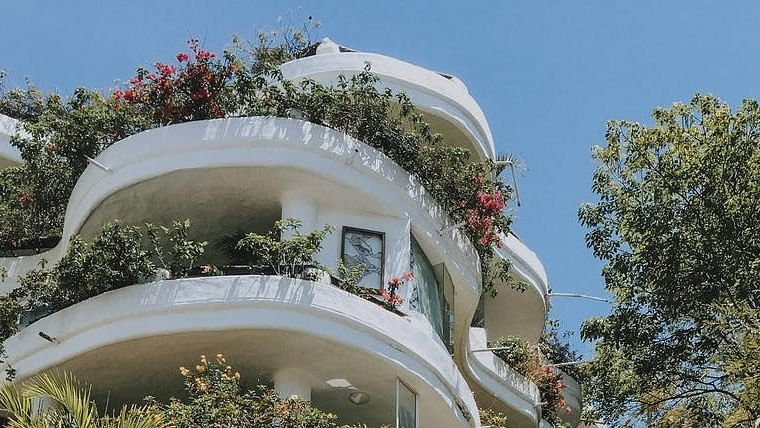 Earth Day 2020: 5 steps to make your own beautiful balcony garden