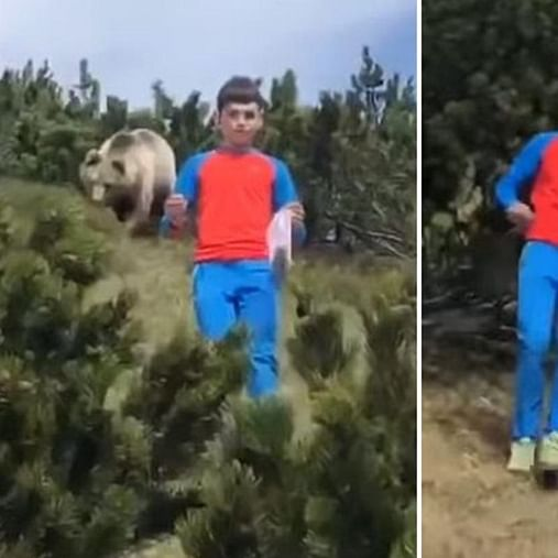 12-year-old boy escapes bear attack after being followed by the beast on a hike