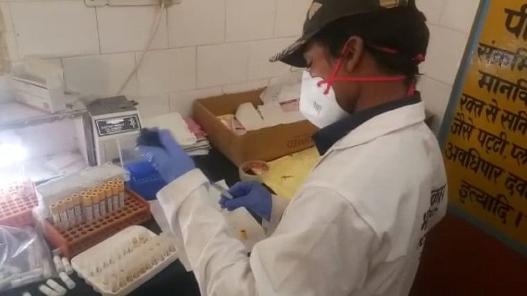 Coronavirus in India: ICMR collects samples for research to check presence of antibodies against COVID-19