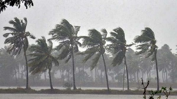 Cyclone Nivar likely to make landfall in Tamil Nadu on Nov 25, heavy rainfall to lash coastal areas today