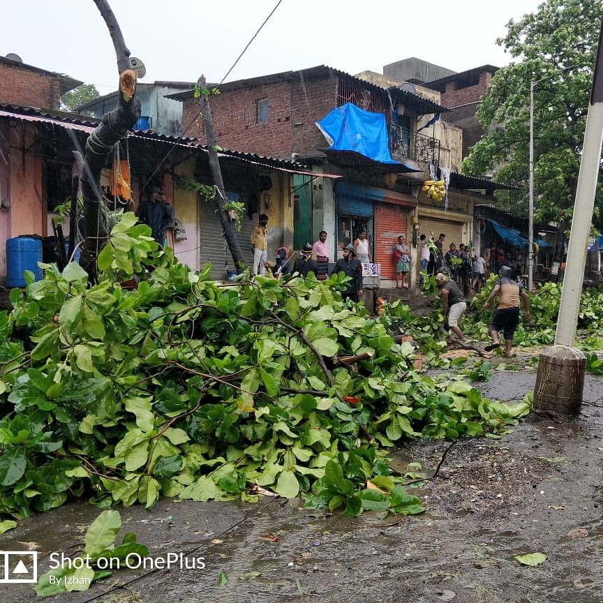 Cyclone Nisarga: 26 trees uprooted in Thane, Kalyan, and Bhiwandi as gusty winds hit several areas