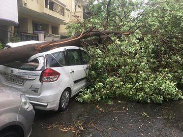 Trees uprooted, vehicles damaged, windows broken as rainstorm hit Delhi, Noida