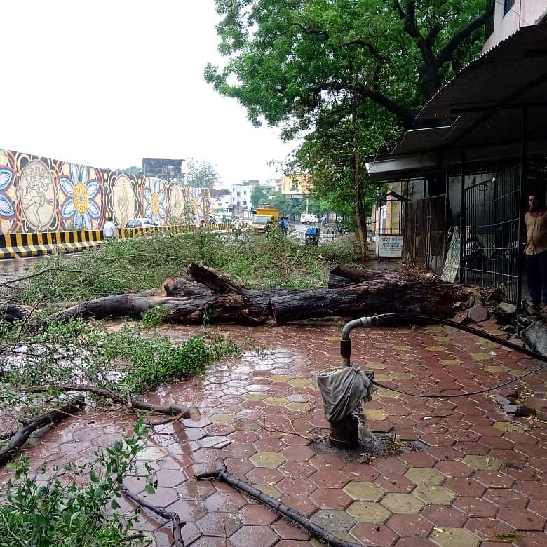 Cyclone turns into depression over Vidarbha, to weaken further