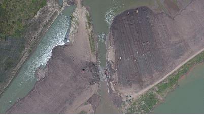China enhances efforts to restore biodiversity of Yangtze River