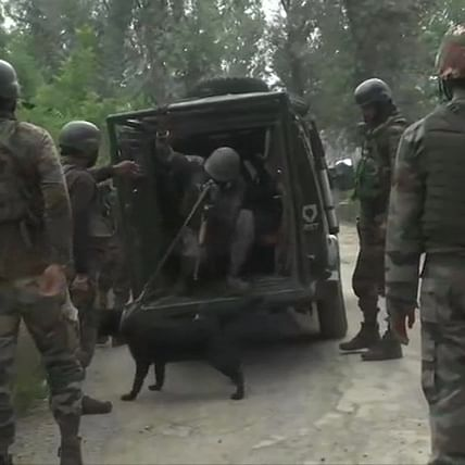One terrorist killed by security during an encounter in Jammu and Kashmir's Srinagar