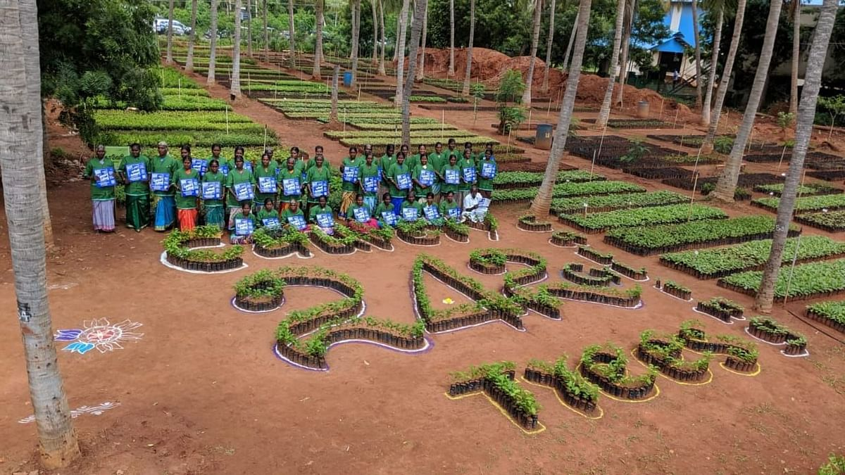 Rally For Rivers surges unabated: 11 million saplings to be planted in 2020 under Cauvery Calling