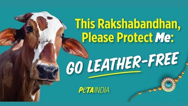 'Don't kill sharks on Holi': Twitter mocks PETA India's 'save cows during Raksha Bandhan' campaign