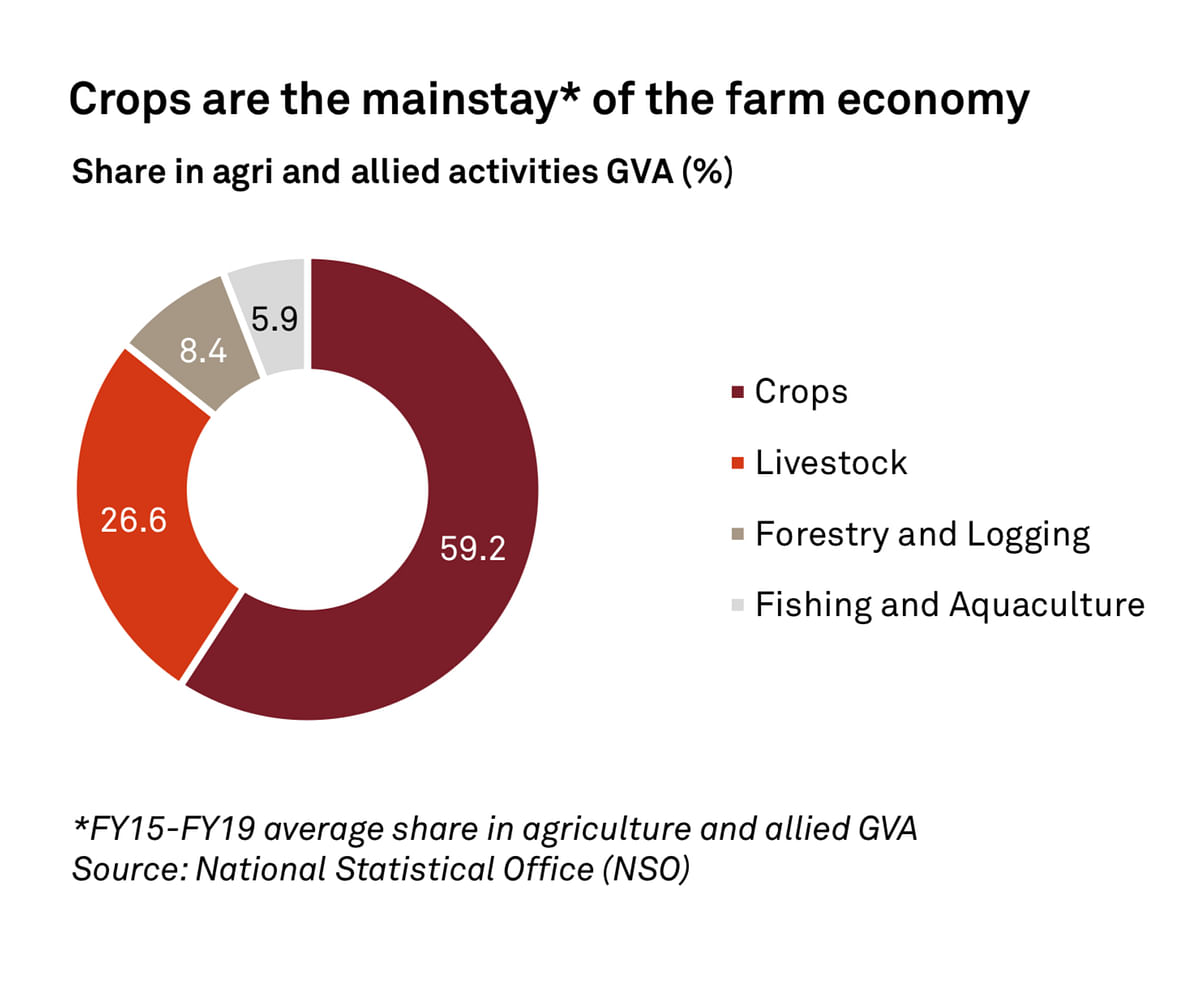 Crops are the mainstay of the farm economy