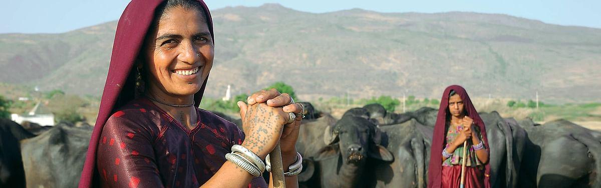 SIES-FPJ webinar: Dairy and microfinance helped ease gender inequality in rural India