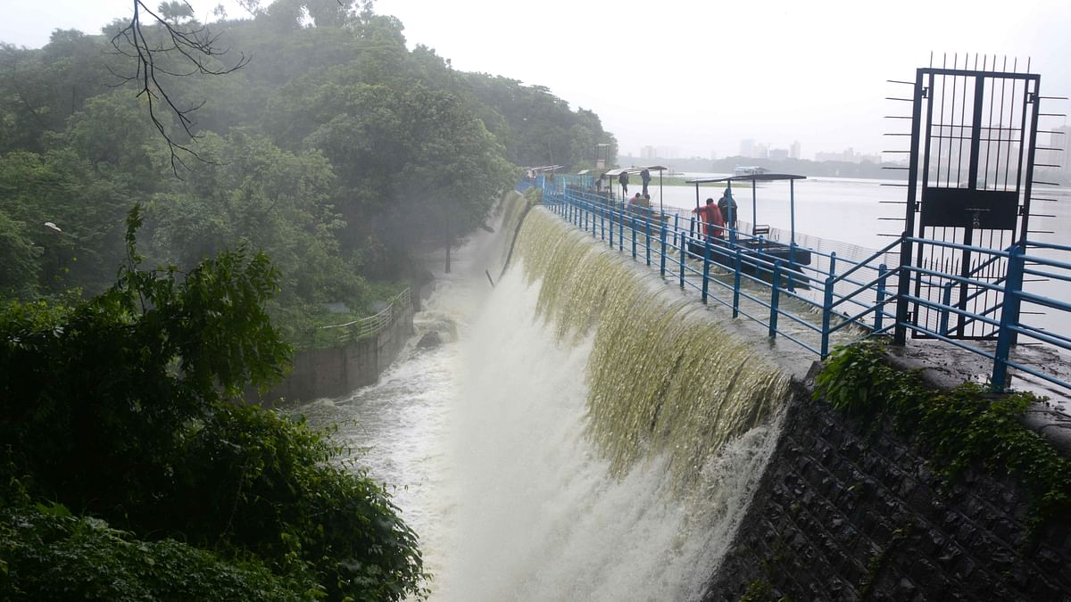 Mumbai Rains: Water level in Mumbai's seven lakes rises to 95.19%