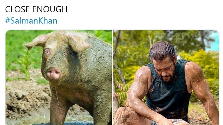 'Waah! Kya acting kar raha hai': Salman Khan trolled for 'respect farmers' post
