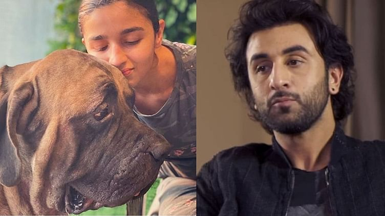 Did Ranbir Kapoor's dog bite him on the face? Actor makes a quiet visit at the hospital