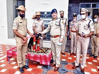 Sniffer dog runs 12 km, helps nab murder accused in Karnataka