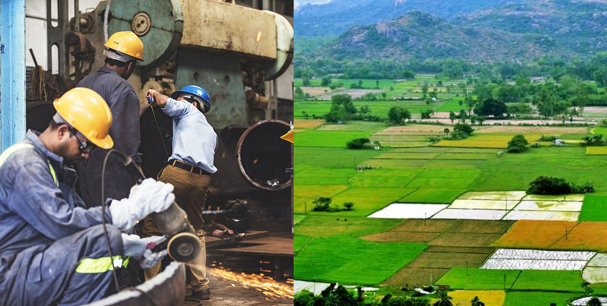 Ease of Doing Business? Maharashtra entrepreneur's struggle to use agricultural land for manufacturing unit goes viral