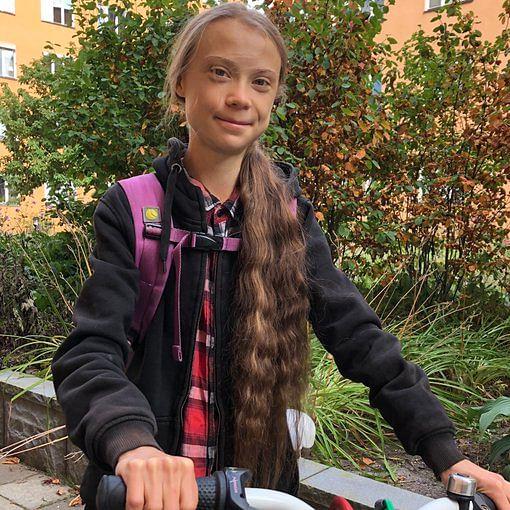 'No high school diploma, no opinion': Twitter reacts to Greta Thunberg's postpone NEET, JEE 2020 tweet