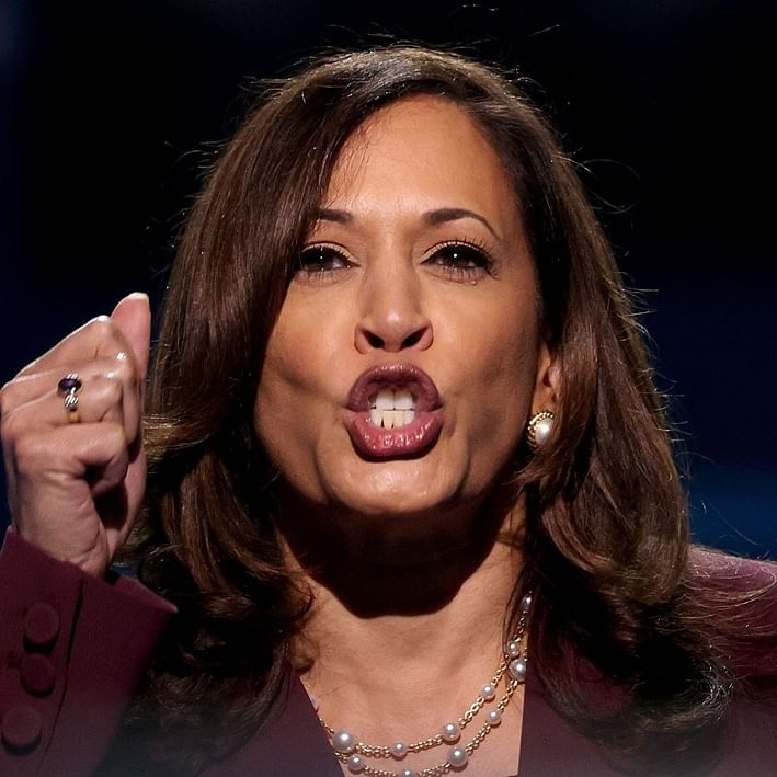 Twitter can't keep calm after Kamala Harris uses Tamil word 'chithi' at DNC - what does it mean?