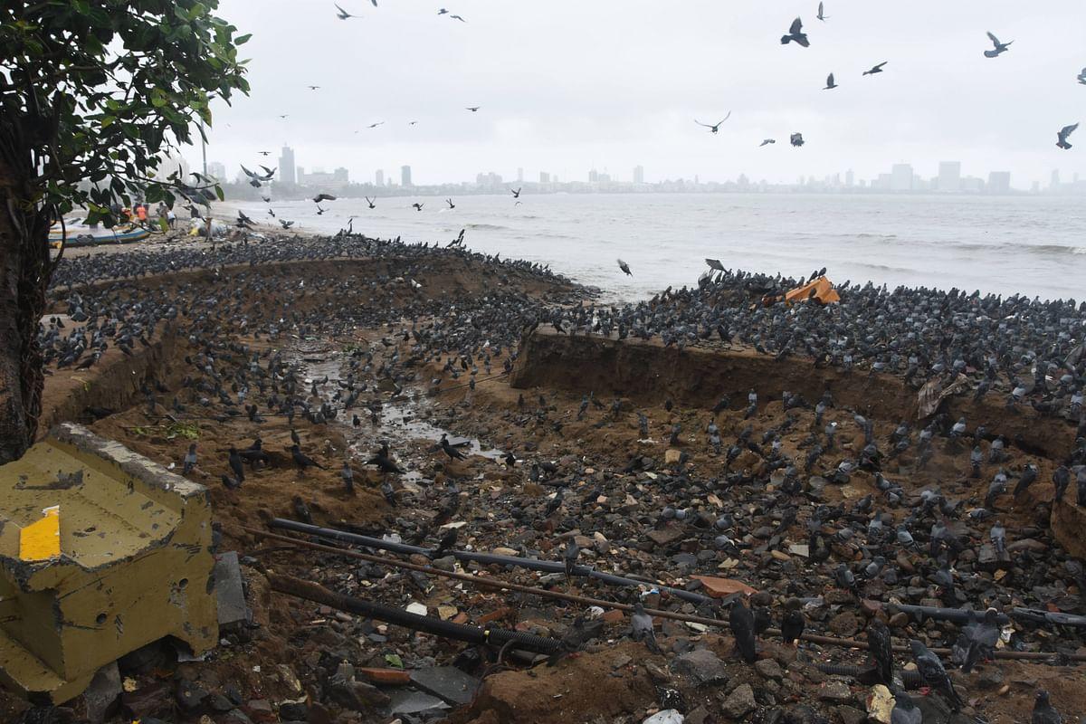 Mumbai Rains: Coastal villages dip underwater