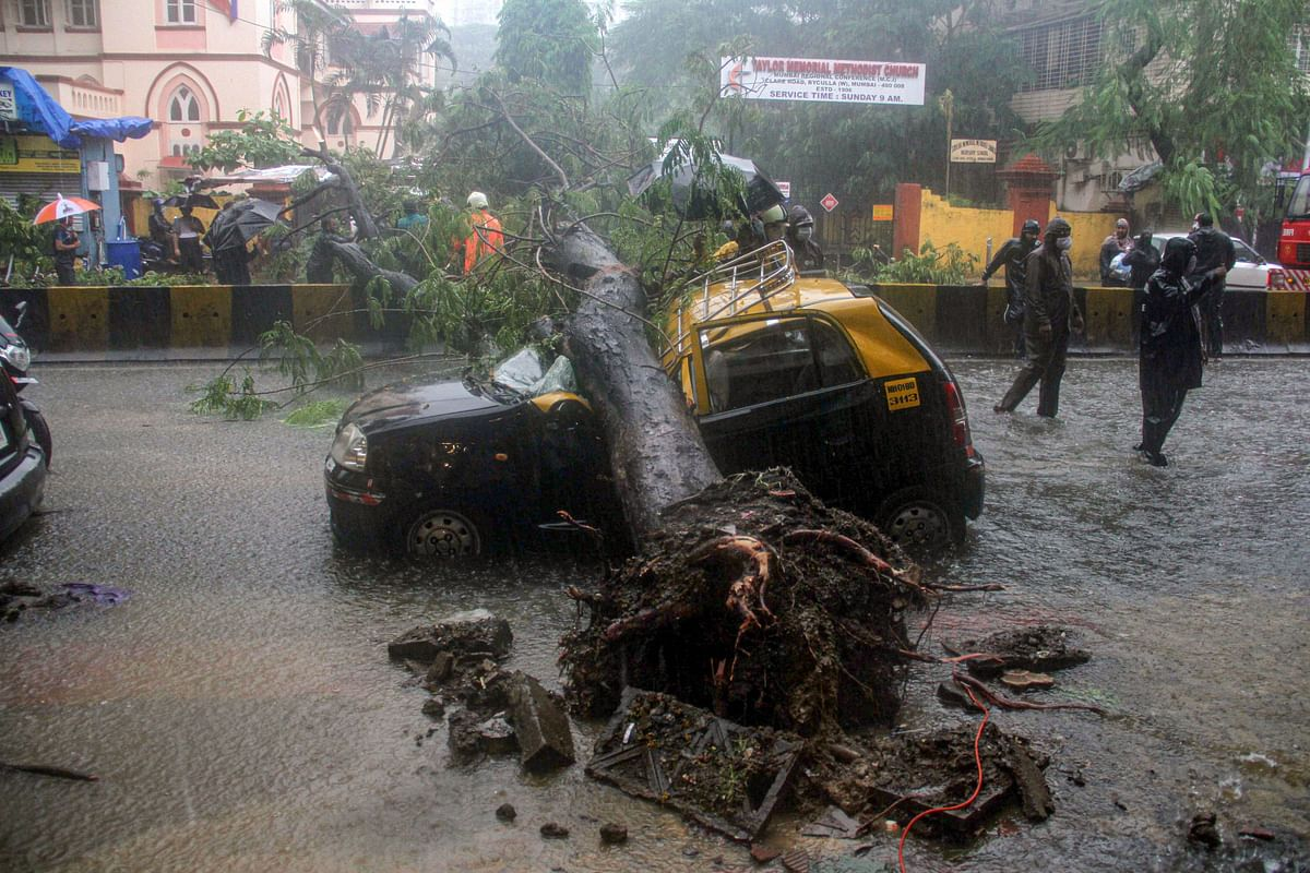Firemen and police personnel carry out relief works after an uprooted tree fell on a taxi due to heavy monsoon rains, in Mumbai, Wednesday, Aug 5