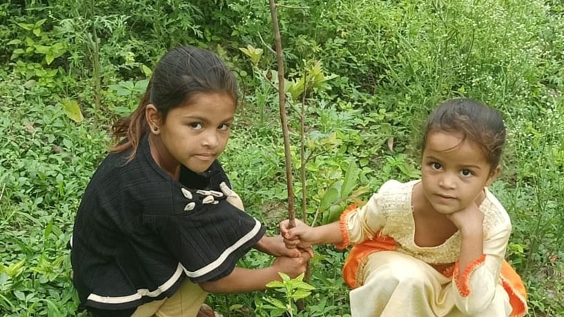 Indore: Plantation drive by Rishikul Shala kids