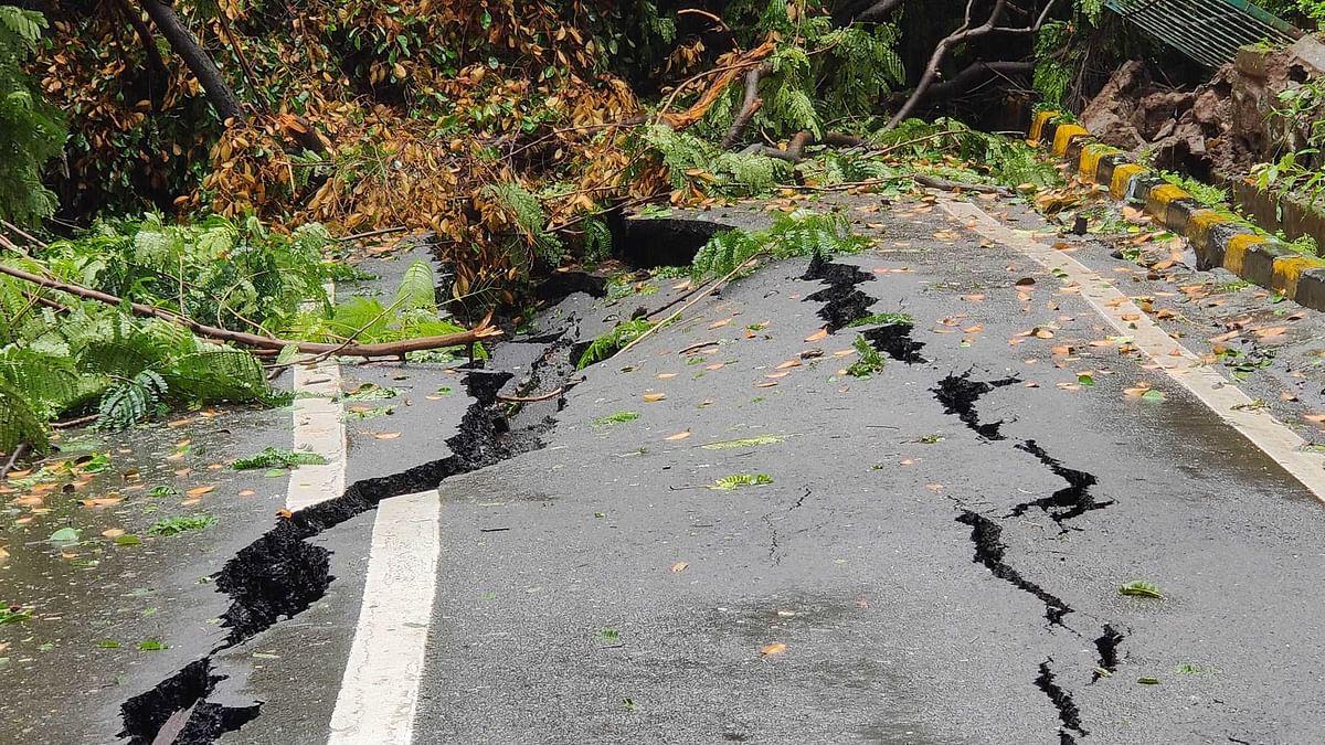 Mumbai Rains: Road crack and trees fall like ninepins after heavy rainfall lash city