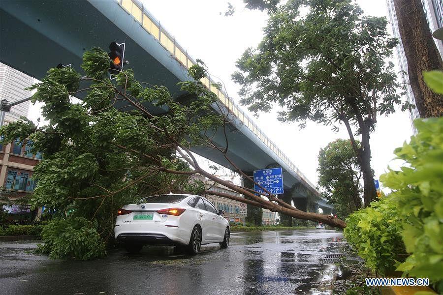 Typhoon Mekkhala makes landfall in China's Fujian