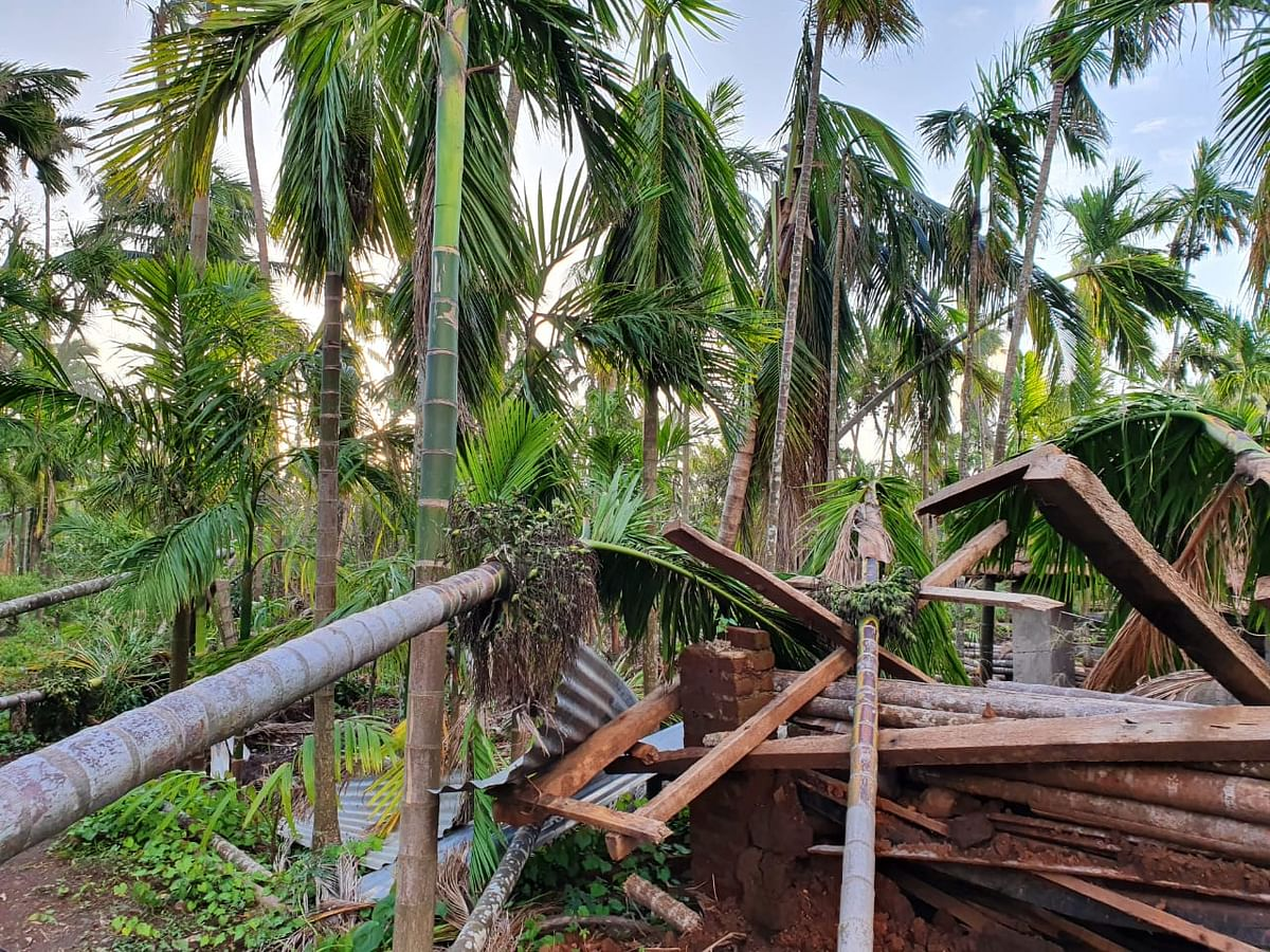 Two months post-Cyclone Nisarga: Velas wails for help