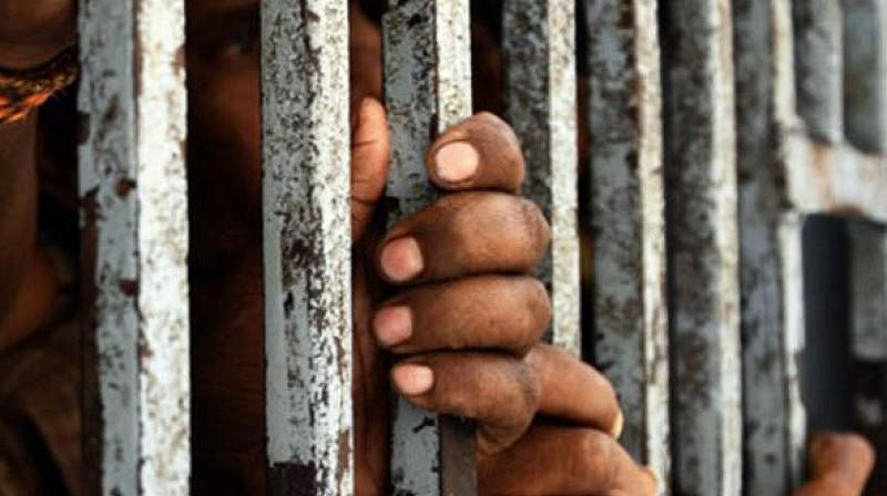 Convicts can't seek bail on ground of spending half of sentence in jail: HC