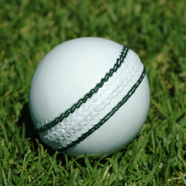 England's white-ball tour to India postponed until early 2021
