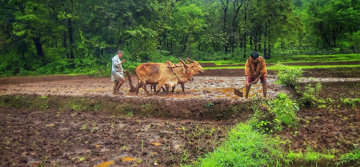 Worst is over; farm sector to cushion COVID-19 impact on economy: Finance Ministry