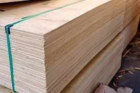 Two girls die after stack of plywood falls on them