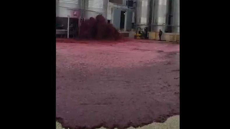 'The Wine-ing (2020)': Viral video of red wine tank blowout gets meme-makers to work