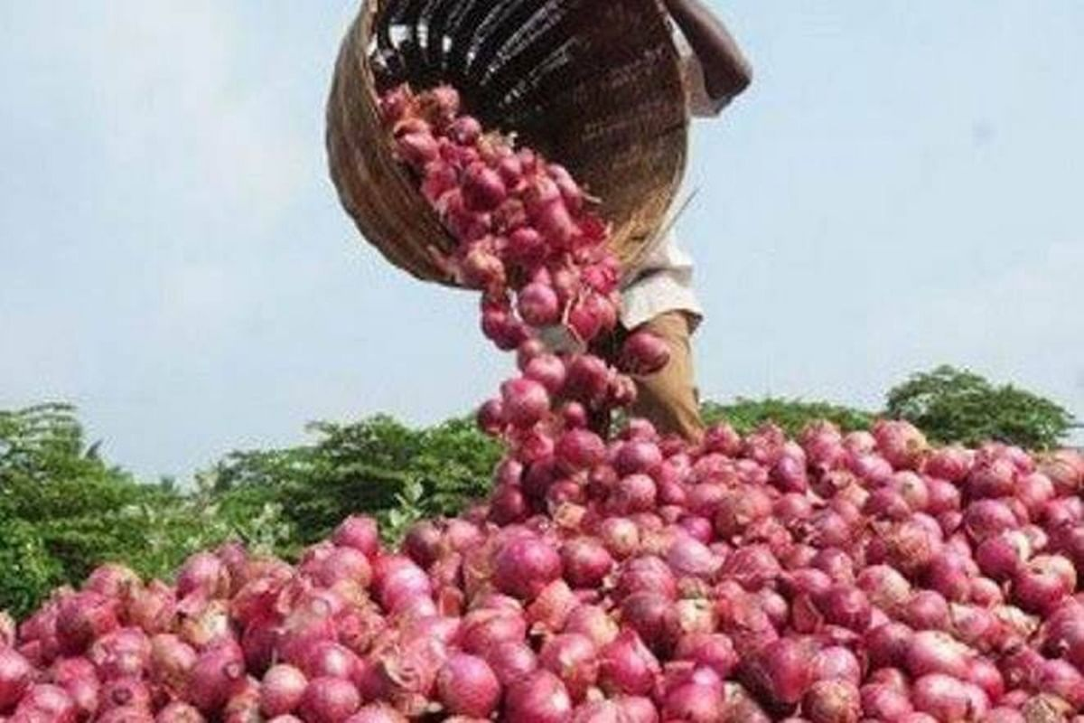Onion Export Ban: Teary farmers in Maharashtra rush to peel off their stock
