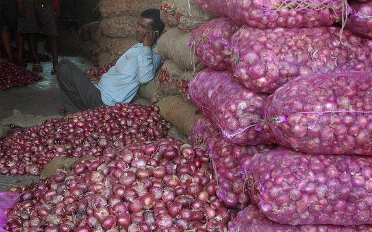 Cooperative leader in Gujarat wants onion export ban lifted