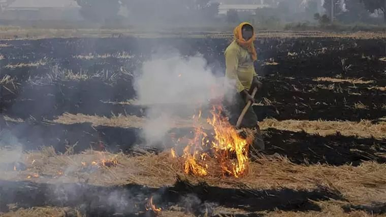 Not fake NASA images: Shots from space show stubble burning has started in Punjab and Haryana