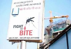 South Mumbai reports 76 per cent of total malaria cases in city