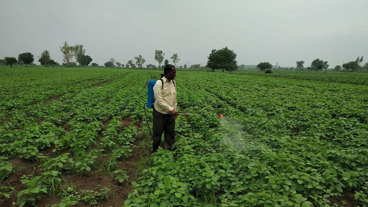 Maharashtra farmers move Switzerland court against Syngenta