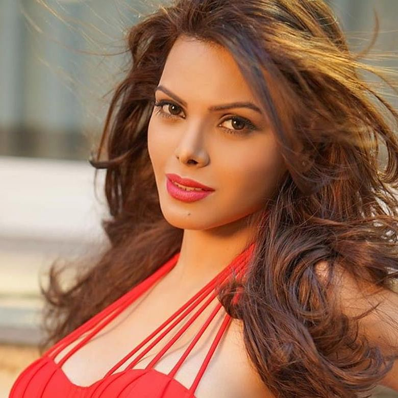 'Real-life Inside Edge': Sherlyn Chopra's 'cricketers' wives snorting cocaine' comment receives slow claps on Twitter