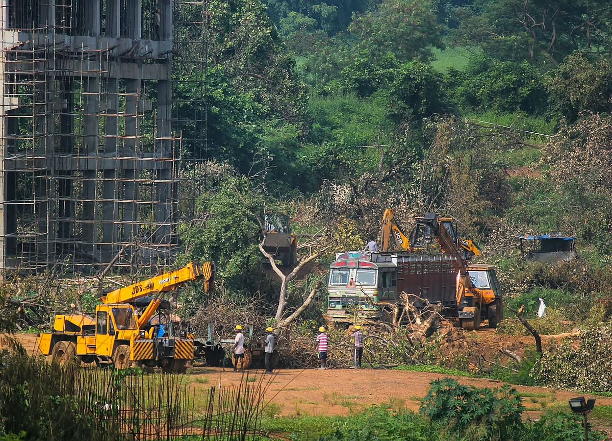 Aarey carshed relocation plan must    be rooted in ground realities