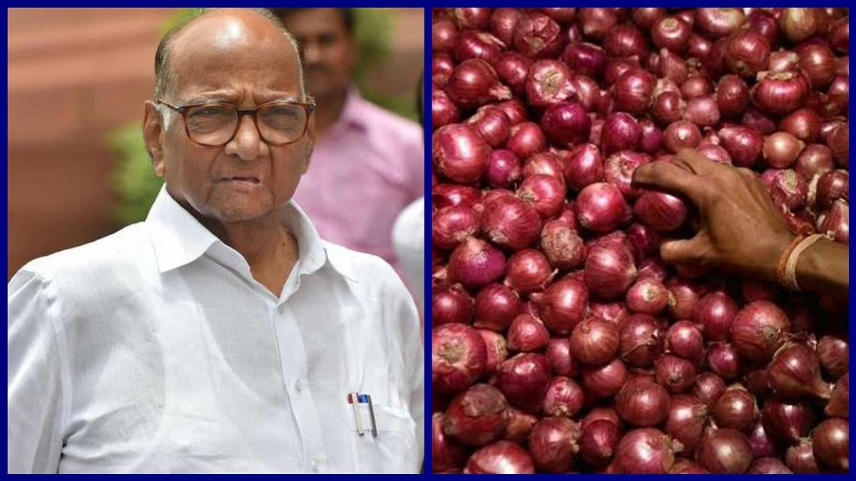 Onion Export Ban: Sharad Pawar takes note of onion producers' tears, requests  Centre to help
