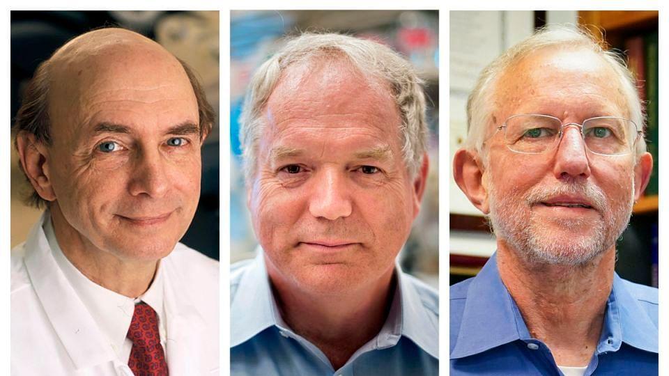 3 win Nobel for discovering hepatitis C virus