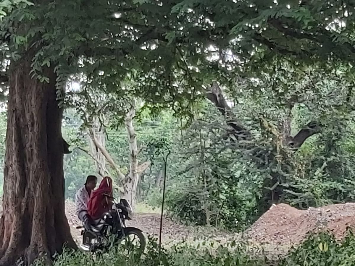 Indore: Laal Bagh; Lovers' paradise, antisocial elements have a field day