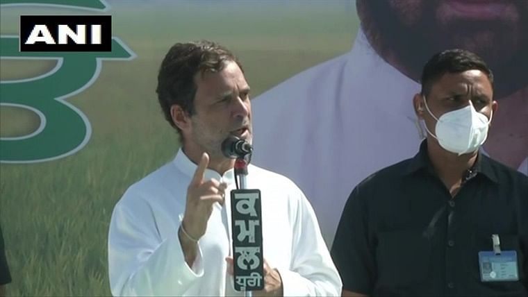 Rahul Gandhi slams Centre, says PM Modi is destroying system involving mandis with new farms laws
