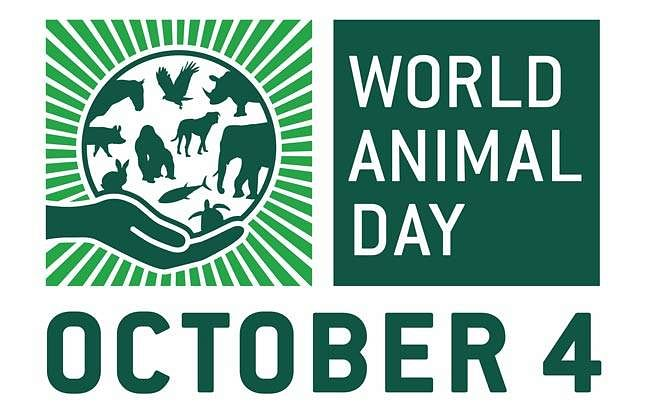 World Animal Day 2020: Experts' clarion call to maintain balance of nature, respect all life forms