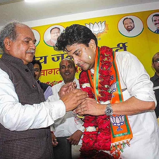 Jyotiradtya Scindia understanding  BJP's traditions, says Narendra Singh Tomar