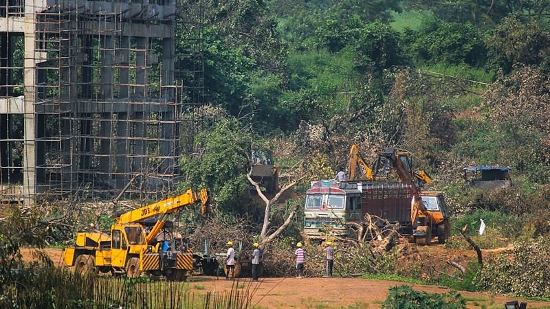 Mumbai: A crane lifts the fallen trees to be carried away for building a construction site of metro car parking shed at Aarey Colony in 2019.