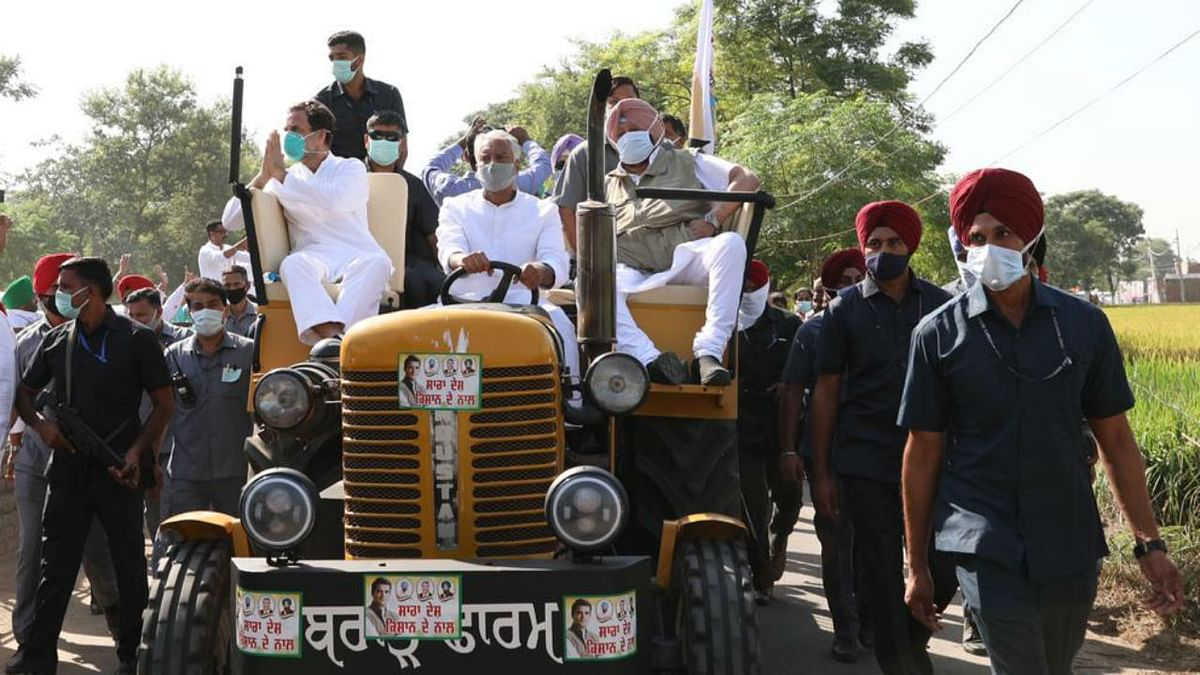 Sofa tractor? Twitterati mock Rahul Gandhi, Amarinder Singh for custom-made seats