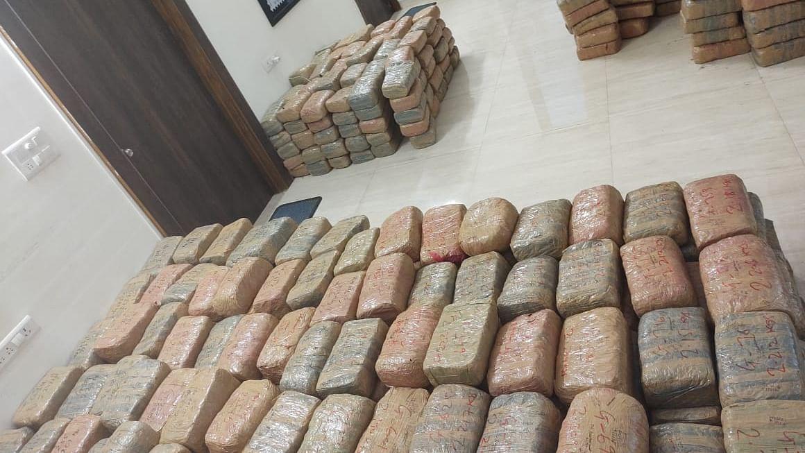Madhya Pradesh: DRI seizes 17.3 quintal cannabis worth Rs 3.5 crore