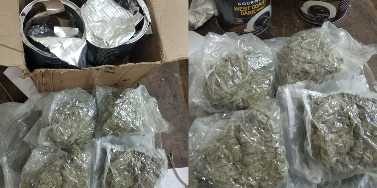 Mumbai: NCB seizes marijuana worth Rs 50 lakh smuggled via courier; two held
