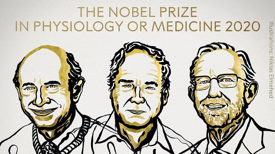 Nobel Prize in Physiology or Medicine 2020 jointly awarded to Harvey J Alter, Michael Houghton, Charles M Rice